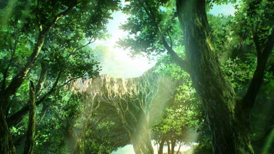 壁纸 风景 森林 植物 桌面 550_309图片图片